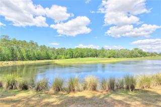 36 Lynnfield Place, Bluffton, SC 29910 (MLS #361773) :: Collins Group Realty