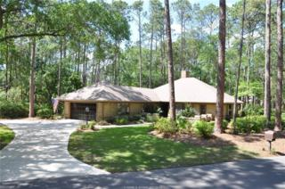 1 Wing Shell Lane, Hilton Head Island, SC 29926 (MLS #361781) :: Collins Group Realty