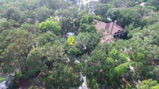 3 Full Sweep, Hilton Head Island, SC 29928 (MLS #362209) :: Collins Group Realty