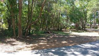25 Sandfiddler Road, Hilton Head Island, SC 29928 (MLS #363333) :: RE/MAX Island Realty