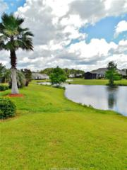 12 Countryside Court, Bluffton, SC 29909 (MLS #363583) :: RE/MAX Island Realty