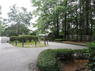 43 Rose Dhu Creek Plantation Drive, Bluffton, SC 29910 (MLS #352457) :: Collins Group Realty