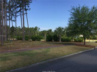 30 Game Land Road, Bluffton, SC 29910 (MLS #361861) :: Collins Group Realty