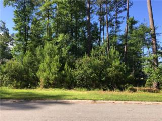 143 Cutter Circle, Bluffton, SC 29909 (MLS #353066) :: Collins Group Realty