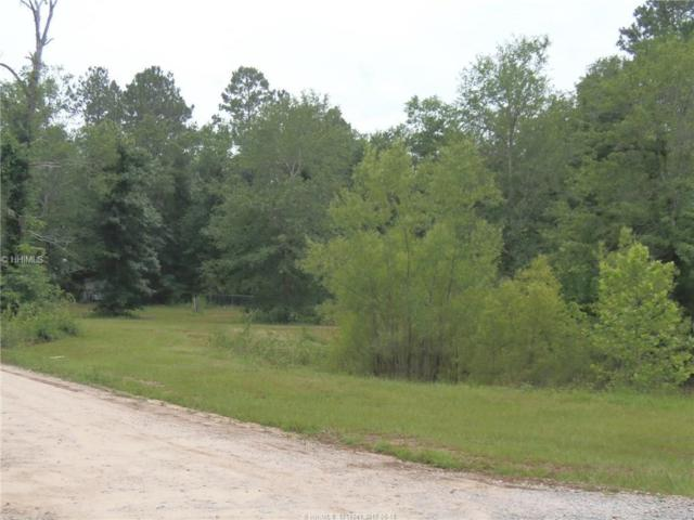 1208 Stokes Bluff Rd, Garnett, SC 29922 (MLS #365081) :: RE/MAX Island Realty