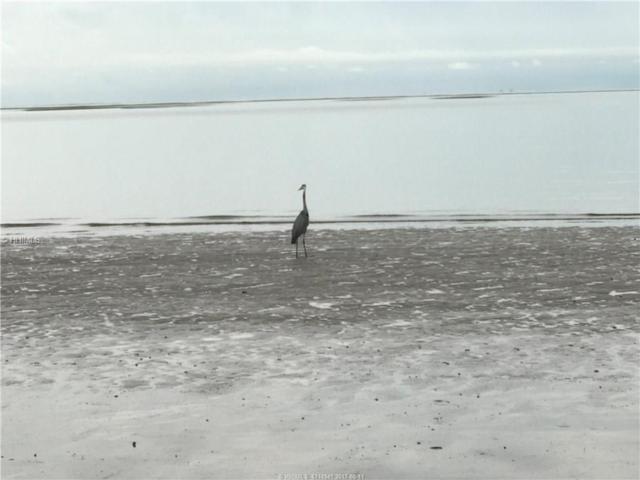 393 School Road, Daufuskie Island, SC 29915 (MLS #367429) :: RE/MAX Coastal Realty