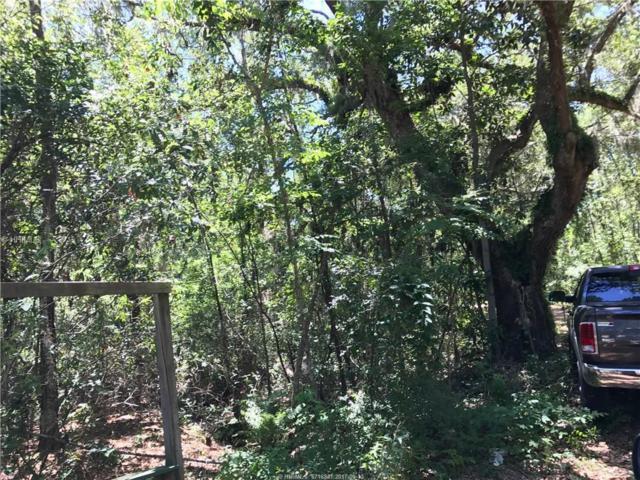 0 Chaplin Drive, Saint Helena Island, SC 29920 (MLS #369059) :: RE/MAX Island Realty