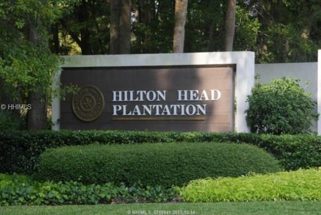 9 Blackgum Place, Hilton Head Island, SC 29926 (MLS #370785) :: Collins Group Realty