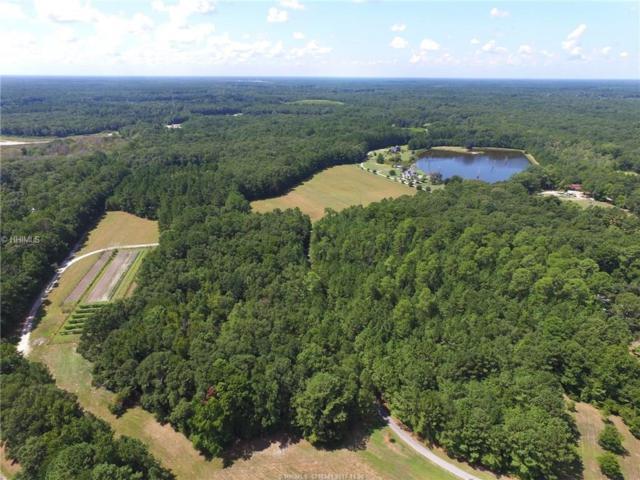 364 R&M Plantation Drive, Ridgeland, SC 29936 (MLS #372745) :: RE/MAX Island Realty