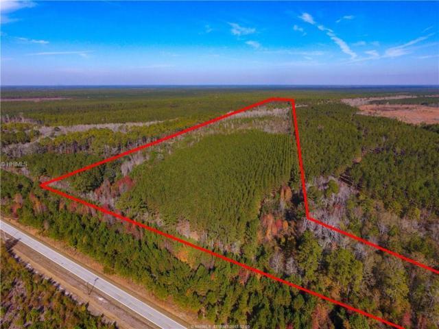 0 Calf Pen Bay Road, Pineland, SC 29934 (MLS #373900) :: RE/MAX Island Realty
