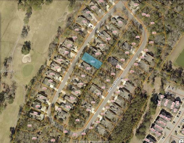 233 Club Gate, Bluffton, SC 29910 (MLS #374624) :: RE/MAX Island Realty