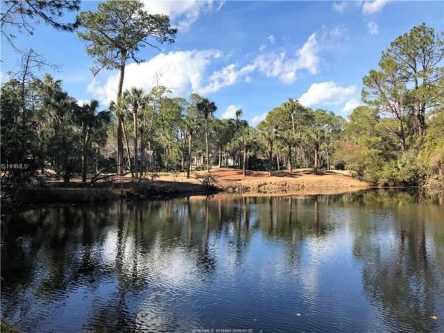 4 Hobnoy Court, Hilton Head Island, SC 29928 (MLS #374713) :: RE/MAX Island Realty