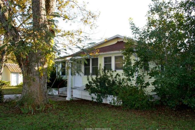6125 Browning Gate Road, Estill, SC 29918 (MLS #374799) :: RE/MAX Coastal Realty