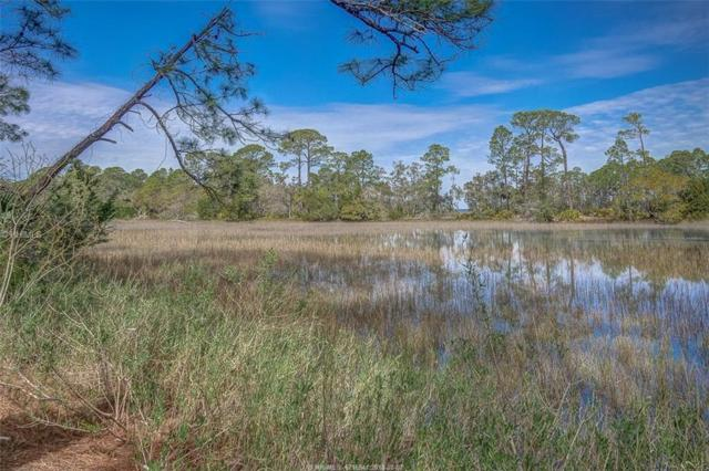 8 Gull Point Road, Hilton Head Island, SC 29928 (MLS #377025) :: Collins Group Realty