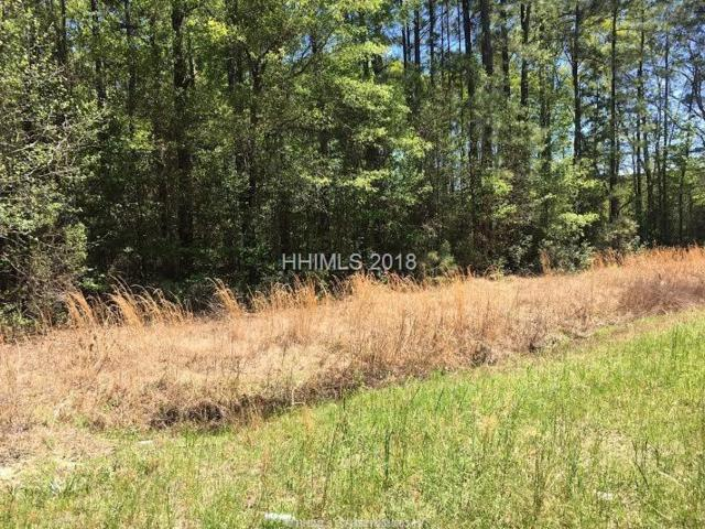 Freedom Parkway, Hardeeville, SC 29927 (MLS #378439) :: Collins Group Realty