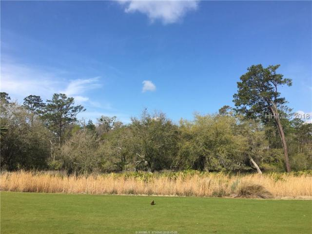175 Mount Pelia Road, Bluffton, SC 29910 (MLS #378848) :: Collins Group Realty