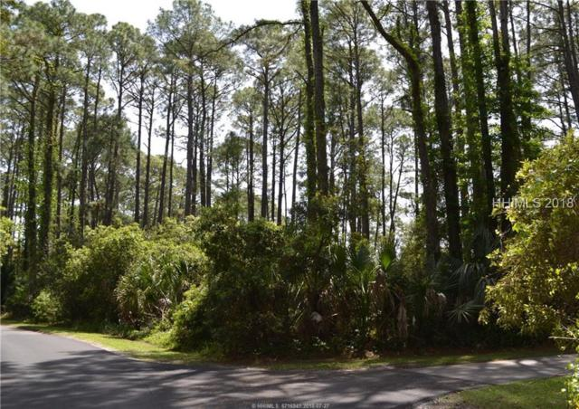 32 Lakeview Lane, Saint Helena Island, SC 29920 (MLS #379288) :: The Alliance Group Realty