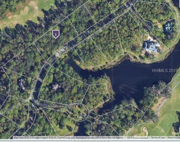 18 Osprey Links Drive, Daufuskie Island, SC 29915 (MLS #383555) :: Collins Group Realty