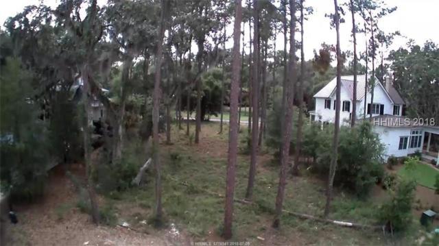 117 Stallings Island Street, Bluffton, SC 29909 (MLS #383739) :: RE/MAX Island Realty