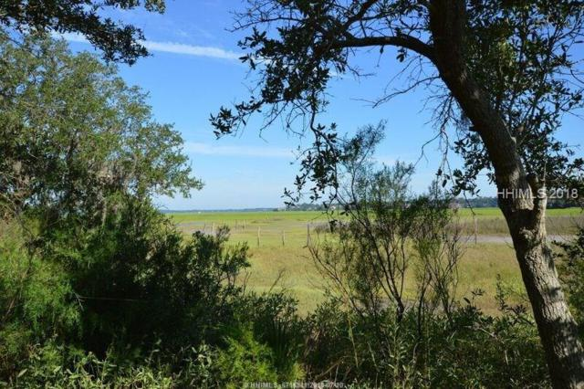 49 Shear Water Drive, Hilton Head Island, SC 29926 (MLS #383762) :: The Alliance Group Realty