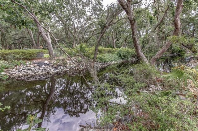 53 Hearthwood Drive, Hilton Head Island, SC 29928 (MLS #385466) :: RE/MAX Island Realty
