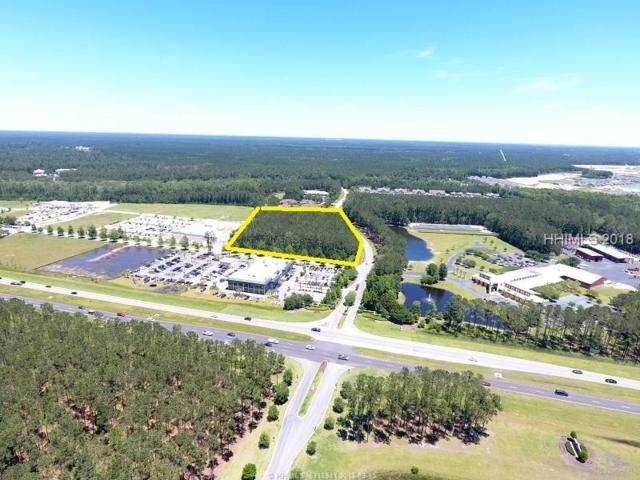 44 Nickle Plate Road, Hardeeville, SC 29927 (MLS #386382) :: The Alliance Group Realty