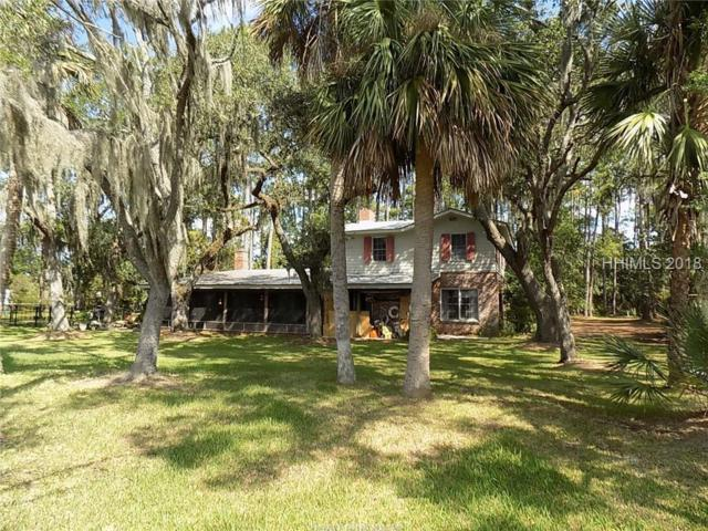72 Doe Island Road, Bluffton, SC 29910 (MLS #386587) :: RE/MAX Coastal Realty