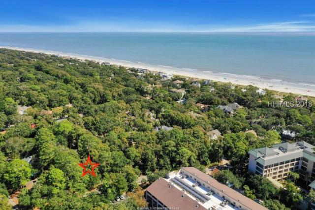7 Bittern Street, Hilton Head Island, SC 29928 (MLS #387264) :: Collins Group Realty