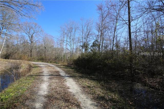 1081 Cohen Road, Pineland, SC 29934 (MLS #387654) :: The Alliance Group Realty