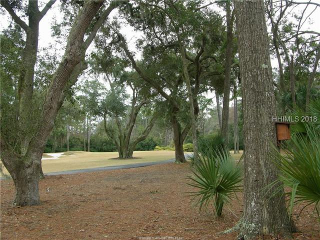 32 Wood Duck Court, Hilton Head Island, SC 29928 (MLS #387898) :: Collins Group Realty