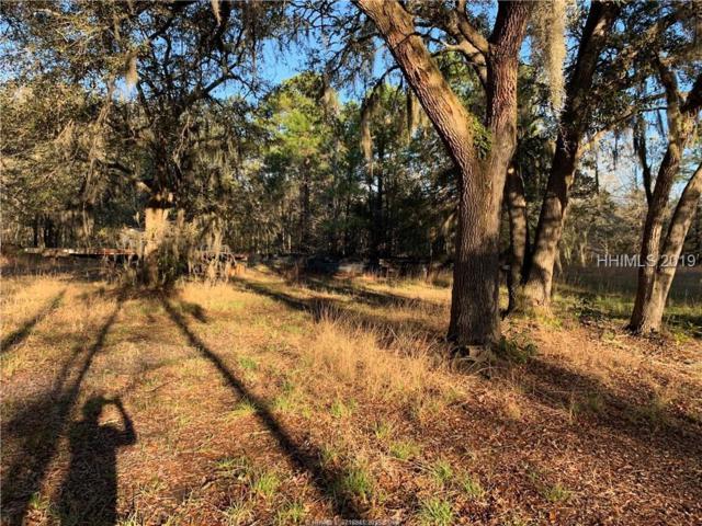 370 Roper Road, Hardeeville, SC 29927 (MLS #388902) :: RE/MAX Coastal Realty