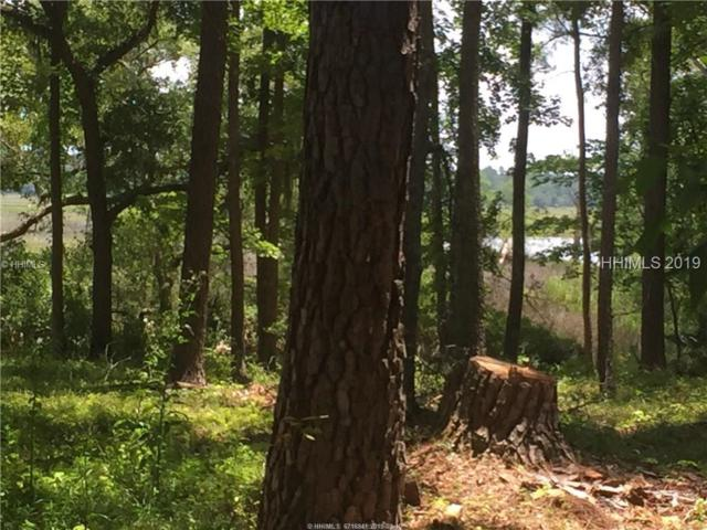 8878 Coosaw Scenic Drive, Ridgeland, SC 29936 (MLS #389897) :: Collins Group Realty