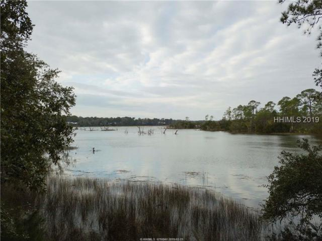 31 Trout Hole Road, Bluffton, SC 29910 (MLS #390276) :: RE/MAX Island Realty