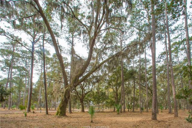 37 Wintercress Road, Bluffton, SC 29910 (MLS #393666) :: RE/MAX Island Realty