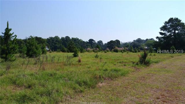 10 Ghost Pony Road, Bluffton, SC 29910 (MLS #394183) :: RE/MAX Island Realty