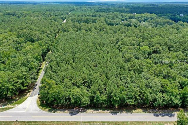 Highway 17, Ridgeland, SC 29936 (MLS #395186) :: Southern Lifestyle Properties