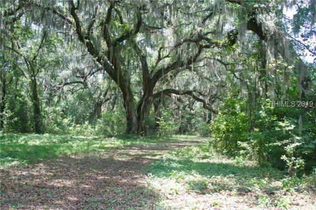 165 Live Oak Road, Ridgeland, SC 29936 (MLS #395302) :: Beth Drake REALTOR®