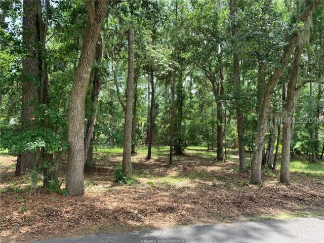 31 Cat Brier Lane, Hilton Head Island, SC 29926 (MLS #395383) :: Collins Group Realty