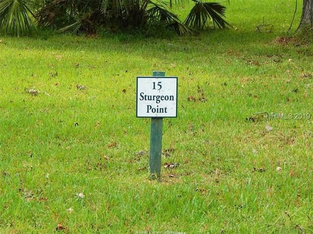 15 Sturgeon Point, Bluffton, SC 29910 (MLS #396137) :: Southern Lifestyle Properties
