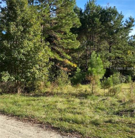165 Cherry Point Rd S, Okatie, SC 29909 (MLS #398376) :: The Alliance Group Realty
