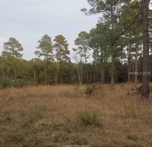 123 Dressen Road, Hardeeville, SC 29927 (MLS #398876) :: RE/MAX Coastal Realty