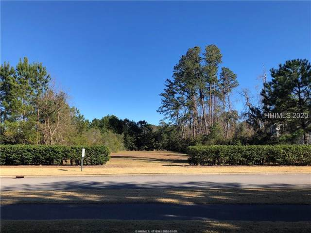 303 Mount Pelia Road, Bluffton, SC 29910 (MLS #399409) :: The Alliance Group Realty