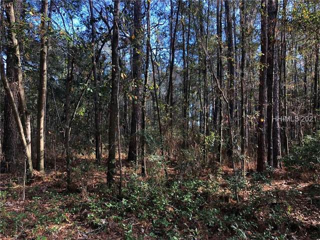 Lot 96 Blue Gill, Ridgeland, SC 29936 (MLS #410951) :: Judy Flanagan