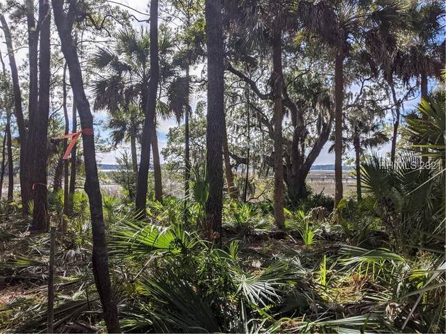 7 Winding Oak Court, Okatie, SC 29909 (MLS #411201) :: The Coastal Living Team