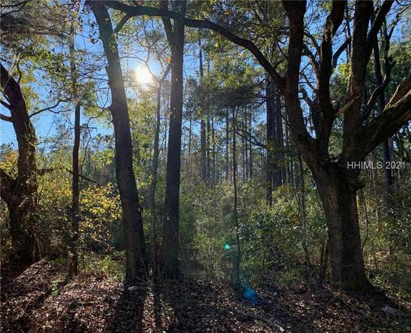 Great Swamp Rd, Ridgeland, SC 29936 (MLS #411821) :: Hilton Head Dot Real Estate