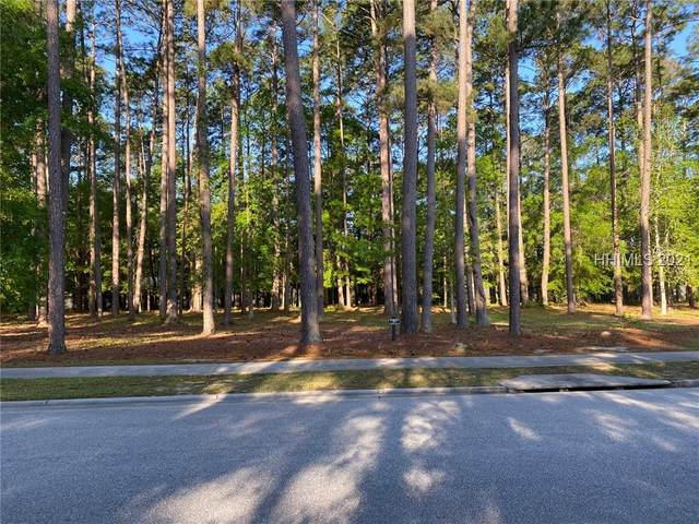 109 Lancaster Boulevard, Okatie, SC 29909 (MLS #414053) :: Hilton Head Dot Real Estate