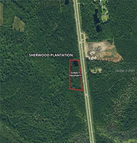 Toomerville Loop, Hardeeville, SC 29927 (MLS #418410) :: The Alliance Group Realty