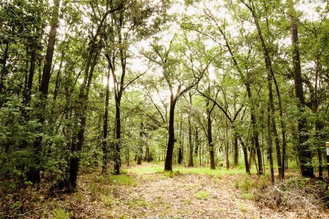 63 Rose Dhu Creek Plantation Drive, Bluffton, SC 29910 (MLS #356568) :: Collins Group Realty