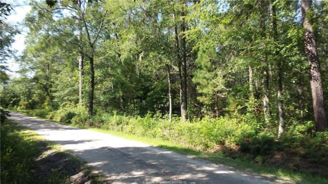 0 Bellinger Hill Road, Hardeeville, SC 29927 (MLS #365526) :: RE/MAX Coastal Realty