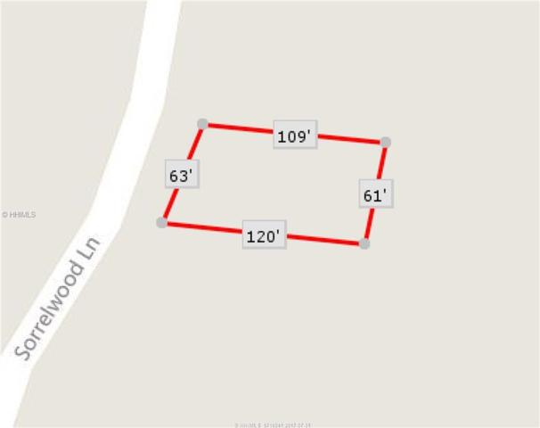 10 Sorrelwood Lane, Bluffton, SC 29910 (MLS #366035) :: RE/MAX Island Realty